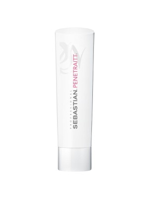 Sebastian Foundation Penetraitt Conditioner 250ml