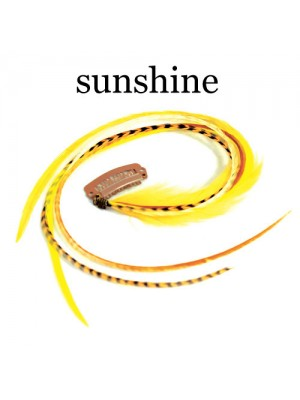 Great Lenghts Quill Clips Grand Sunshine